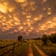 Sunset Sky in the Reserve by Shane Rorke